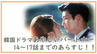 韓国ドラマ-あやしいパートナー14~17話