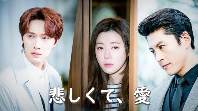 韓国ドラマ-悲しくて、愛